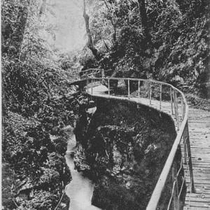Chute du bief du Sierroz pour alimenter le moulin de Dalby et l' huilerie. Passerelle en bois le long des gorges du Sierroz.